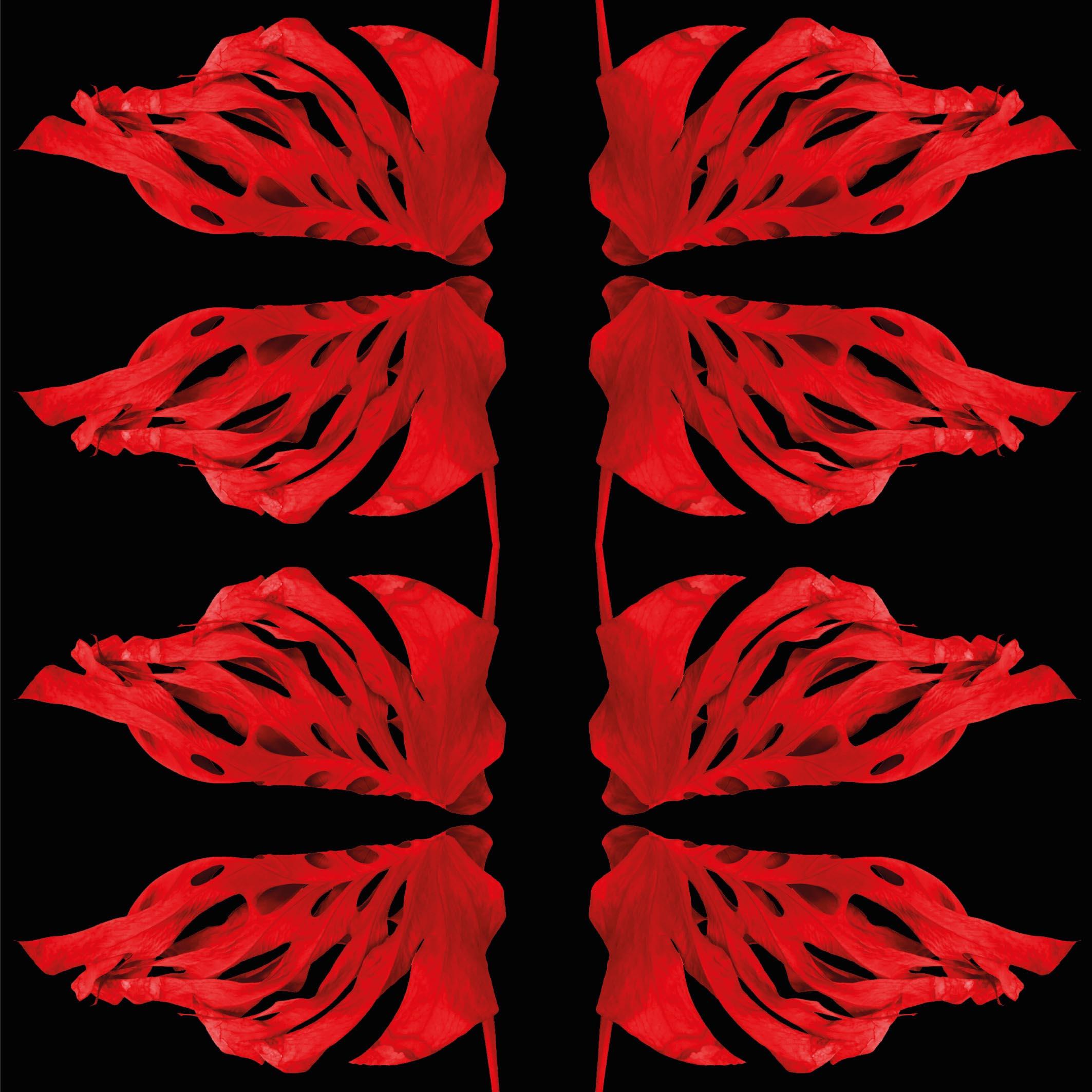 37231-logo.jpg