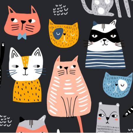 20571 | Koty psy 1