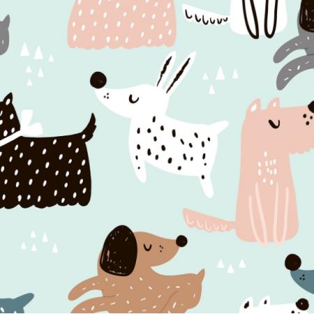 20588   Koty psy 12