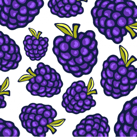 Fabric 20793 | Blue berry