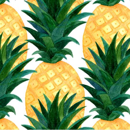 20830 | watercolor Pineapples0