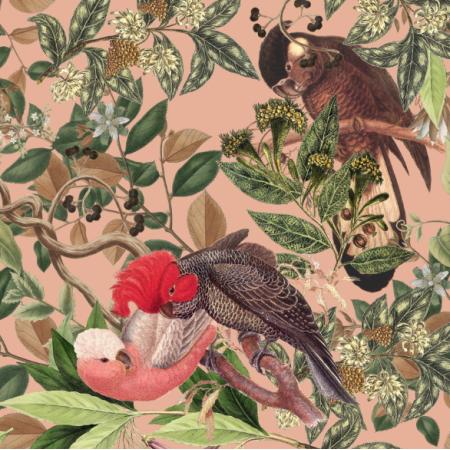 20831 | Papugi na Różowym tle