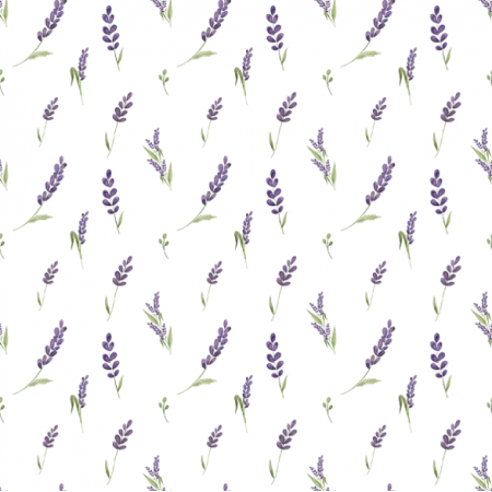 20844 | lavender0