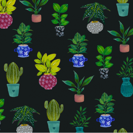 Fabric 21234 | Black plant potted succulents