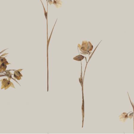 Tkanina 21625 | Nostalgia (wzór z suszonych kwiatów)