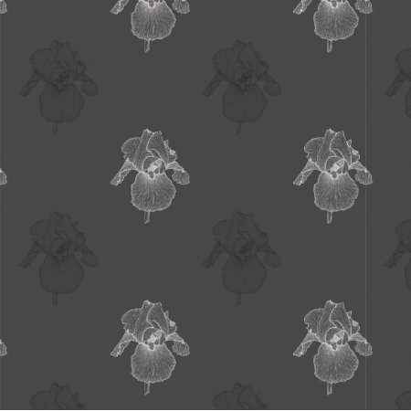 21660 | Iris czarny