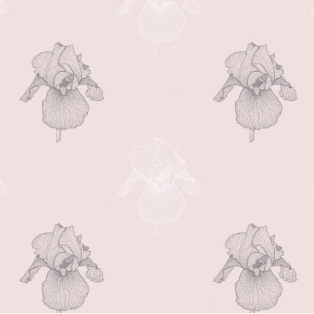 21662 | Irys pink