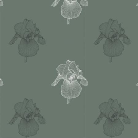 21663 | Irys zielony