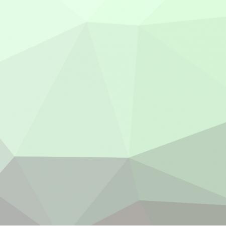 Fabric 2328 | RASPBERRY MINT