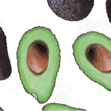 Fabric 21792 | Avocado on white
