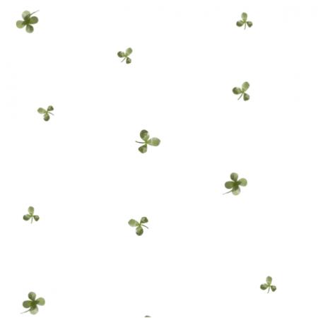 Fabric 22455 | koniczyna