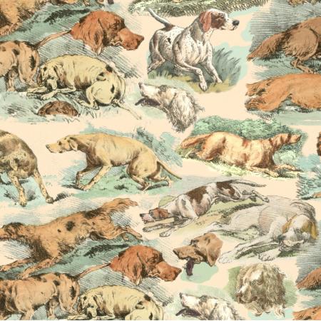 Fabric 22564 | ZWARIOWANE PSY SETERY I POINTERY _ KREMOWE TŁO