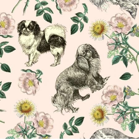 Fabric 22656 | PSY SPANIELKI MINIATUROWE I DZIKA RÓŻA - PINK CHAMPAGNE