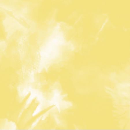 22724 | Tie Dye 11