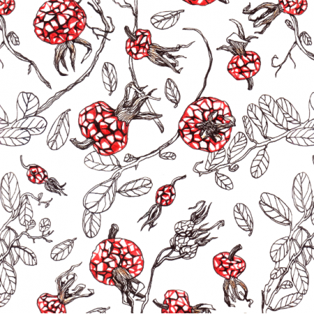 Fabric 22792 | Red Rosehip