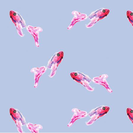 22979 | ryby