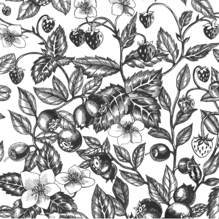 Fabric 23016 | Graphic Berries White