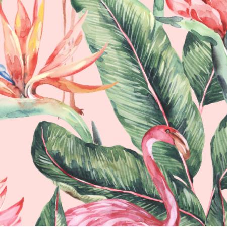 Fabric 23570 | Flamingo1