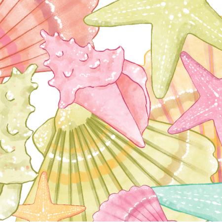 Fabric 23658 | Shells XL