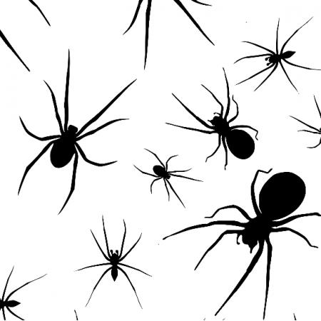 Tkanina 23662 | Spiders xl