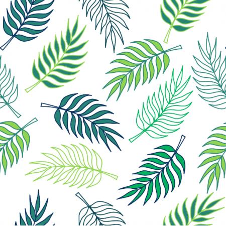 23900 | Tropikalny wzór. liście palmy na białym tle0