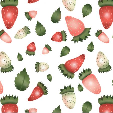 Fabric 24170 | FragolIne