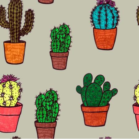 24175 | Kaktusy szare