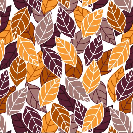 24189 | Jesienne liście na białym tle