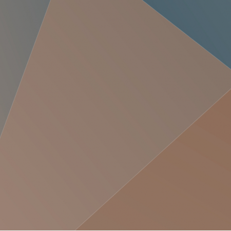 Fabric 2571   LOWPOLY 6