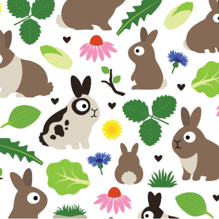 Fabric 24379 | Bunnies And Their Treats