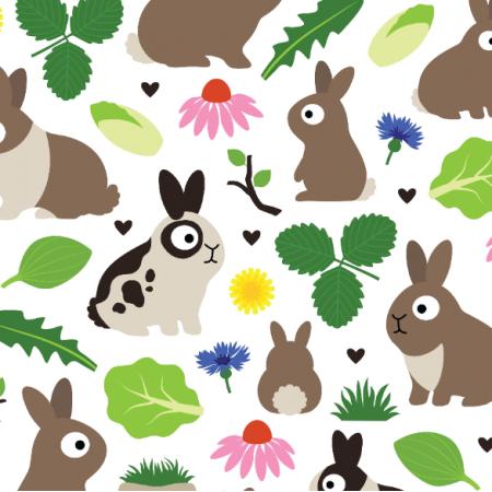 24379 | Bunnies And Their Treats