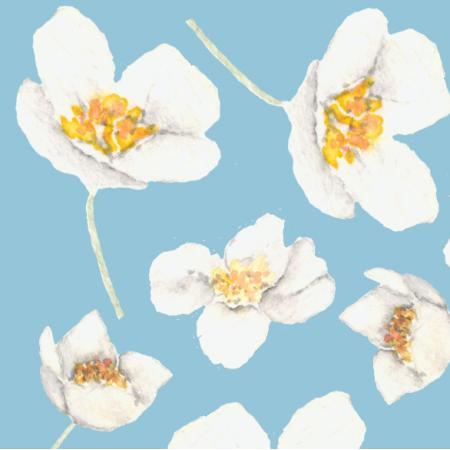 Fabric 24497 | kwiat maliny
