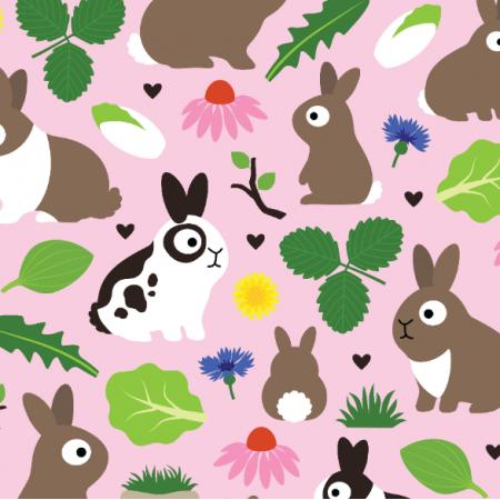 Fabric 24519 | Bunnies And Their Treats
