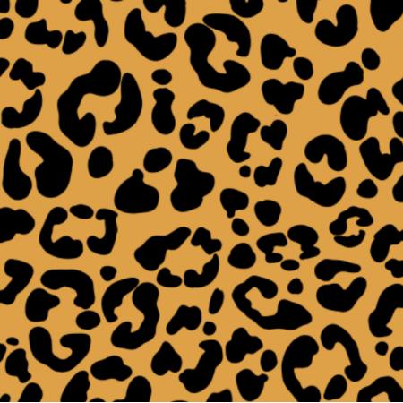 24528 | Leopardo g