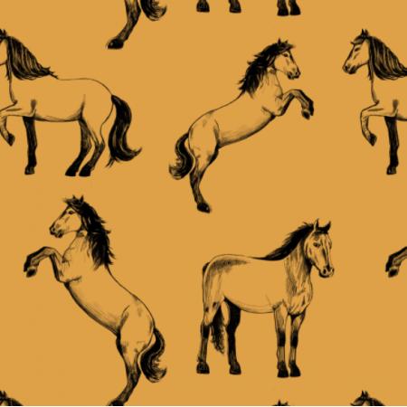 Fabric 24584 | Cavallo