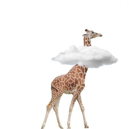 Tkanina 24635 | z głową w chmurach w