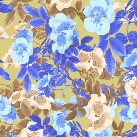 24749   Blue roses