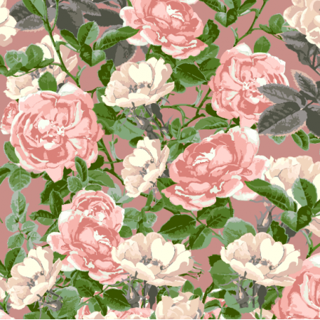 24754   DELICATE ROSES