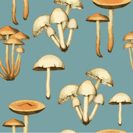 24772 | Retro mushrooms