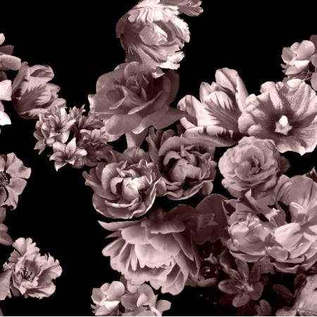 Fabric 24887 | Flowers Web