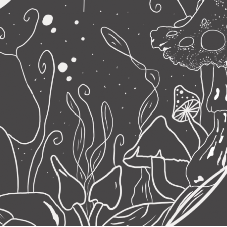 24899 | Kosmiczne grzyby - czerń