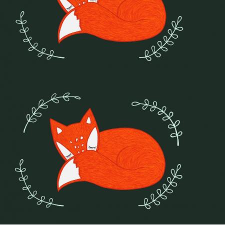 25139 | Śpiące liski