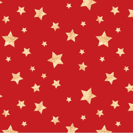 25505 | Christmas stars