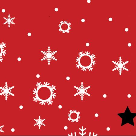 25506 | Merry christmas