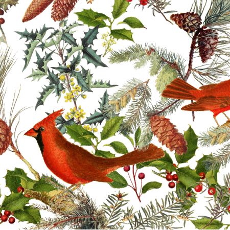 Fabric 25713 | CHRISTAMS BIRDS