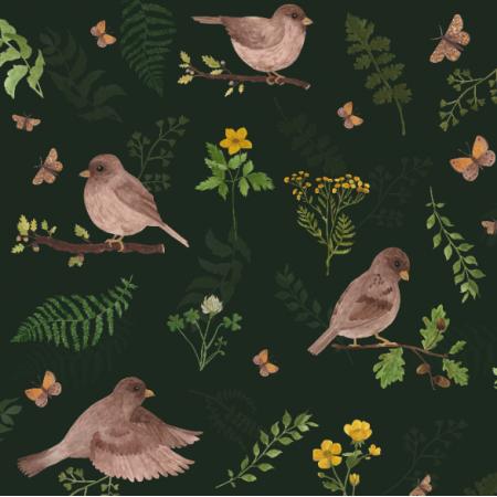 25805 | Leśne ptaki