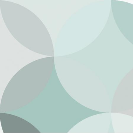 Fabric 2753 | circle mint