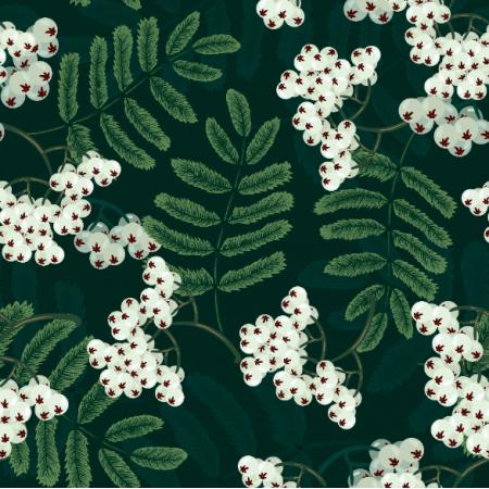 Fabric 26239 | JARZĘBINA biała