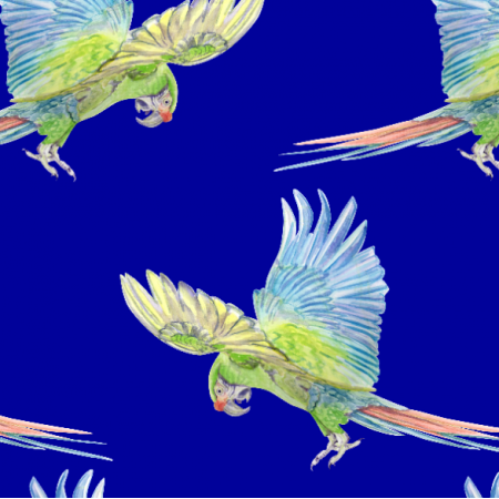 Fabric 26338   kolorowa papuga