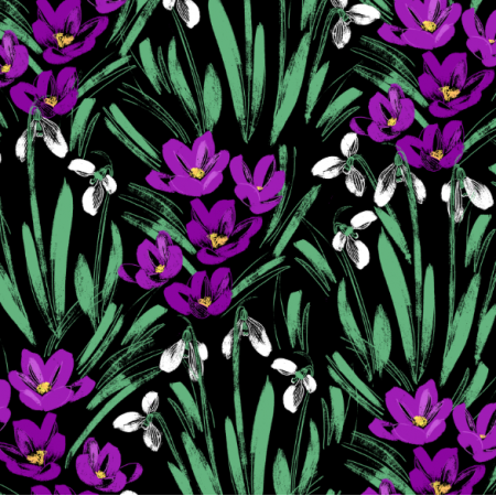 26749 | snowdrops and crocuses